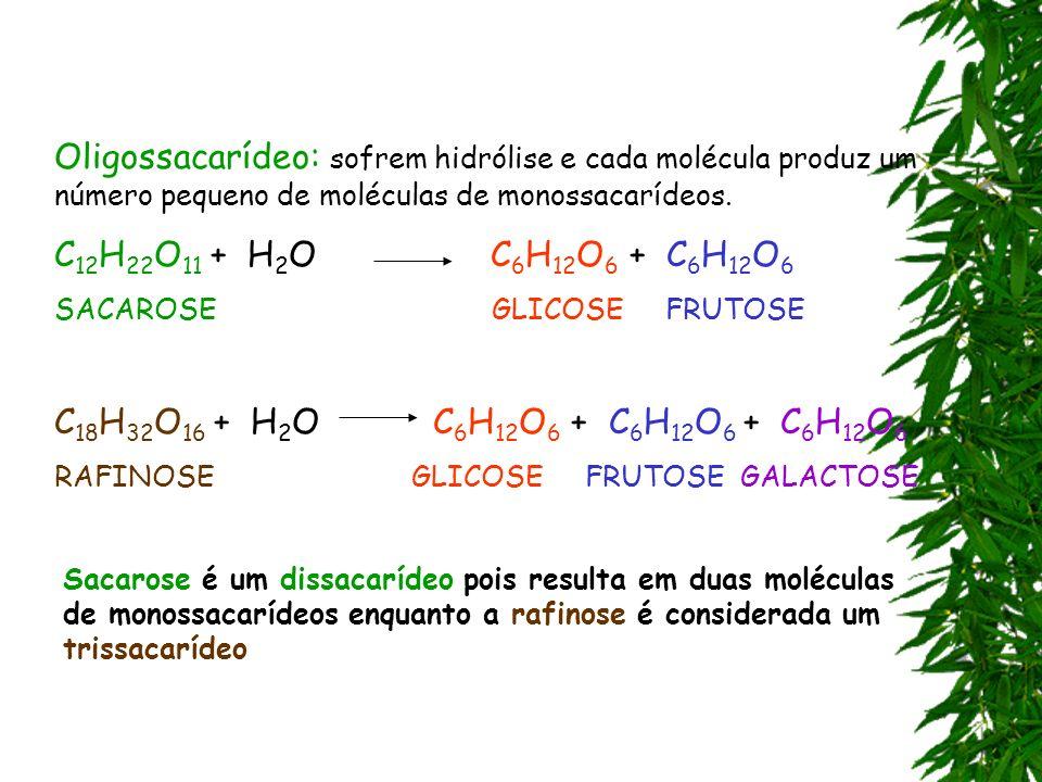 Oligossacarídeo: sofrem hidrólise e cada molécula produz um número pequeno de moléculas de monossacarídeos. C 12 H 22 O 11 + H 2 O C 6 H 12 O 6 + C 6