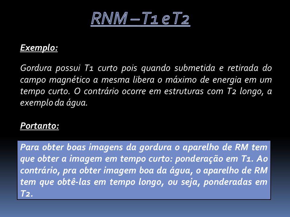 Medicina, Ribeirão Preto, 30: 458-471, out./dez.1997.