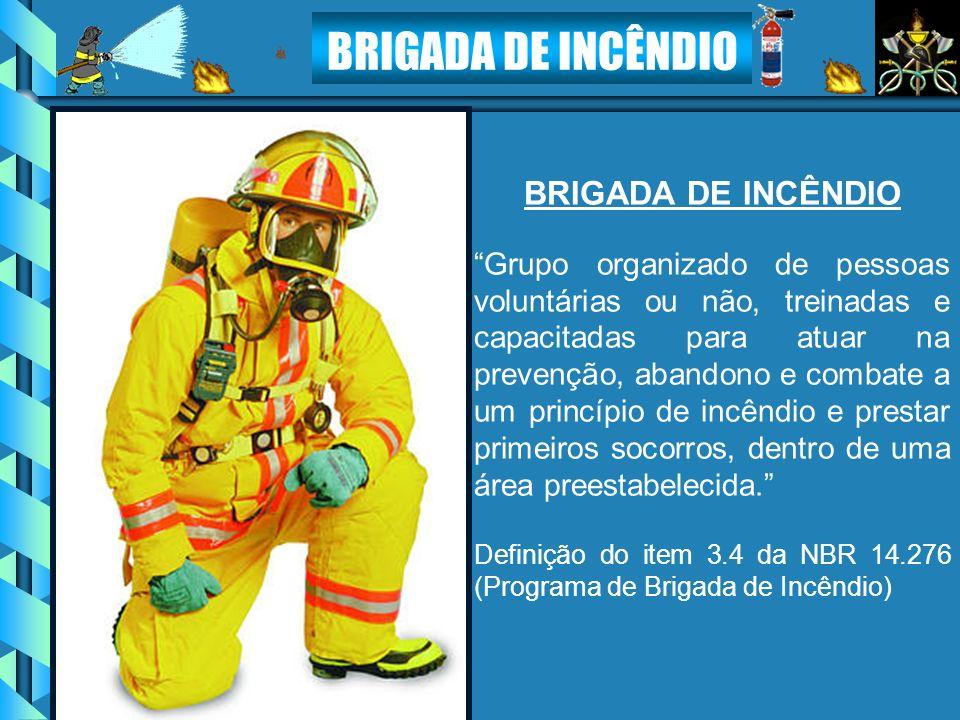 Grupo organizado de pessoas voluntárias ou não, treinadas e capacitadas para atuar na prevenção, abandono e combate a um princípio de incêndio e prest