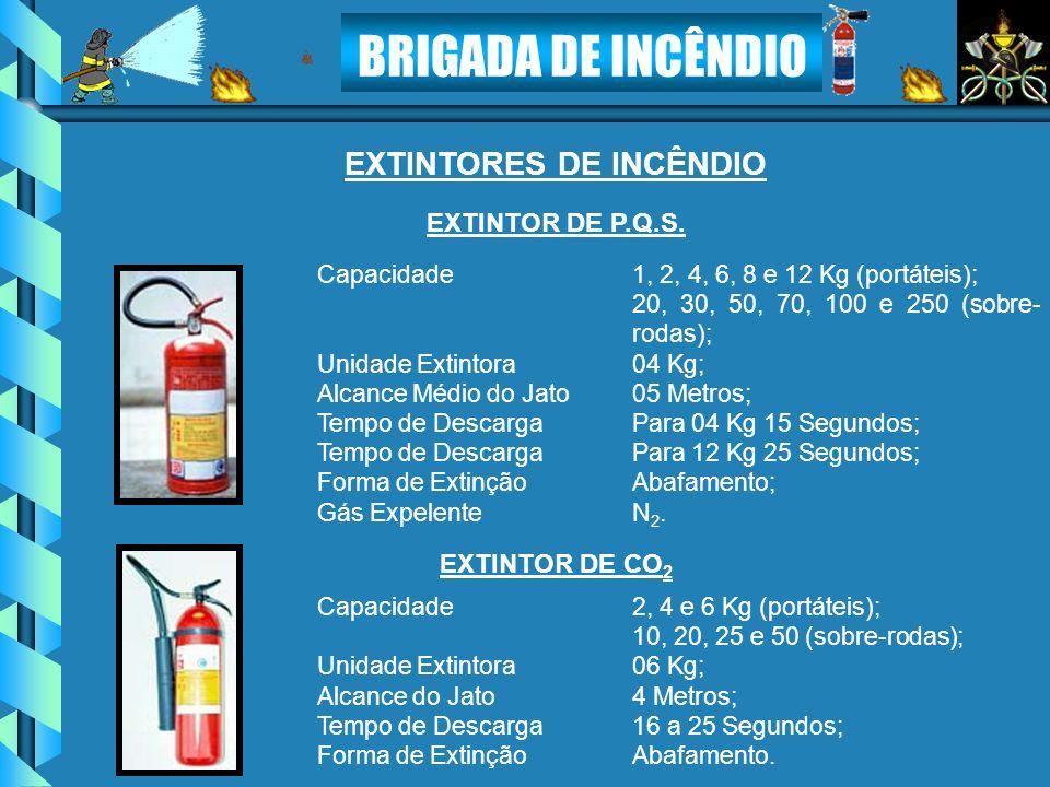 BRIGADA DE INCÊNDIO EXTINTORES DE INCÊNDIO Capacidade1, 2, 4, 6, 8 e 12 Kg (portáteis); 20, 30, 50, 70, 100 e 250 (sobre- rodas); Unidade Extintora04