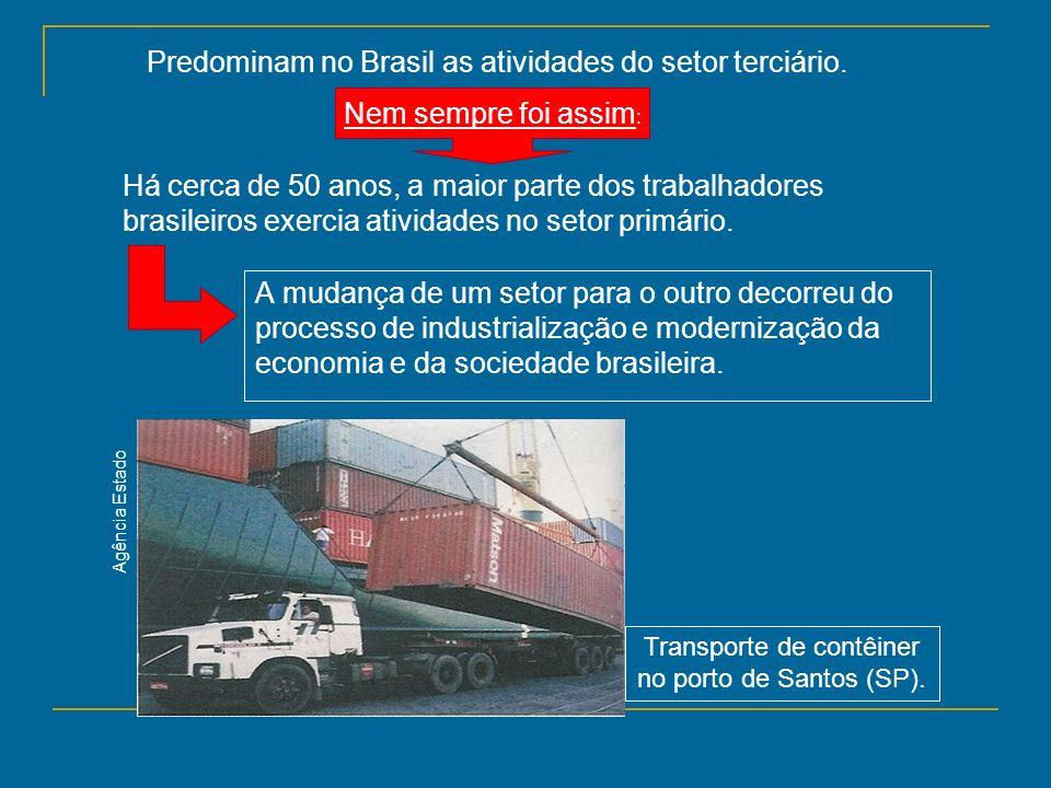 A mudança de um setor para o outro decorreu do processo de industrialização e modernização da economia e da sociedade brasileira. Predominam no Brasil