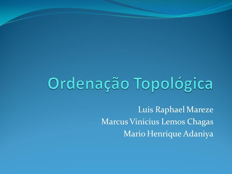 Luis Raphael Mareze Marcus Vinicius Lemos Chagas Mario Henrique Adaniya