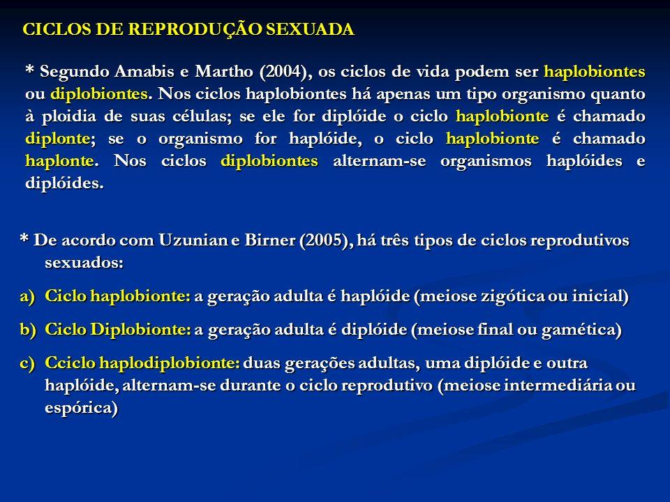 CICLOS DE REPRODUÇÃO SEXUADA * Segundo Amabis e Martho (2004), os ciclos de vida podem ser haplobiontes ou diplobiontes. Nos ciclos haplobiontes há ap