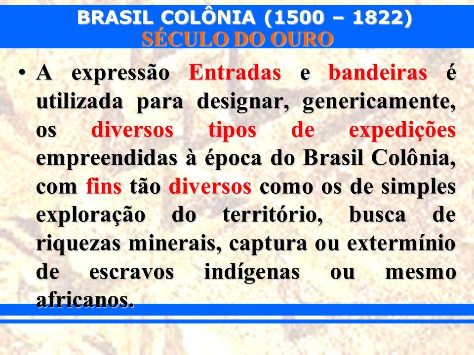BRASIL COLÔNIA (1500 – 1822) SÉCULO DO OURO De maneira geral, considera-se que: Entradas eram financiadas pelos cofres públicos e com o apoio do governo colonial em nome da Coroa de Portugal; respeitando o limite de Tordesilhas.