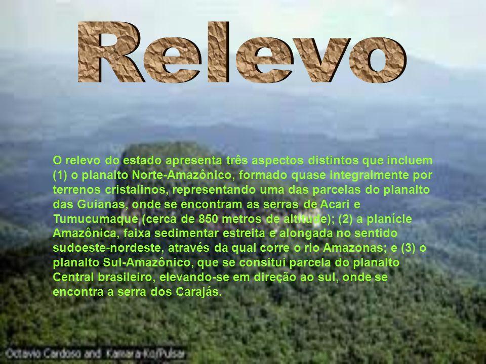 O relevo do estado apresenta três aspectos distintos que incluem (1) o planalto Norte-Amazônico, formado quase integralmente por terrenos cristalinos, representando uma das parcelas do planalto das Guianas, onde se encontram as serras de Acari e Tumucumaque (cerca de 850 metros de altitude); (2) a planície Amazônica, faixa sedimentar estreita e alongada no sentido sudoeste-nordeste, através da qual corre o rio Amazonas; e (3) o planalto Sul-Amazônico, que se consitui parcela do planalto Central brasileiro, elevando-se em direção ao sul, onde se encontra a serra dos Carajás.