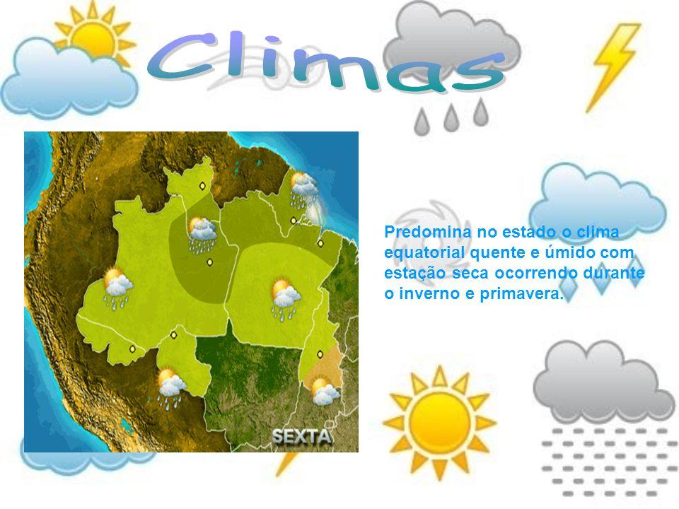 Predomina no estado o clima equatorial quente e úmido com estação seca ocorrendo durante o inverno e primavera.