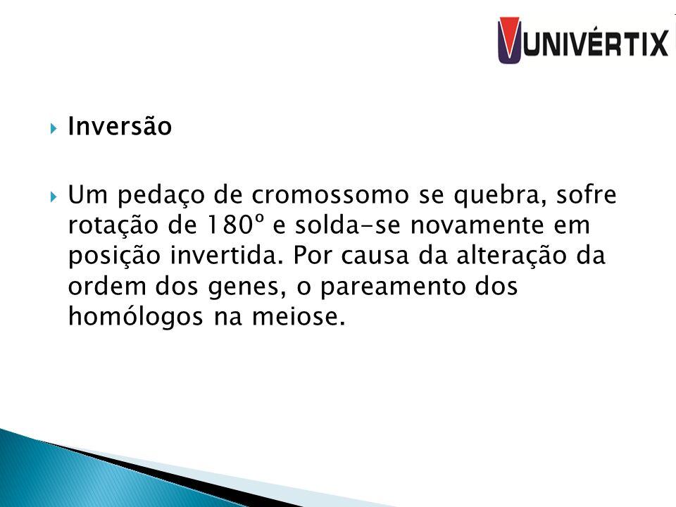 Inversão Um pedaço de cromossomo se quebra, sofre rotação de 180º e solda-se novamente em posição invertida. Por causa da alteração da ordem dos genes