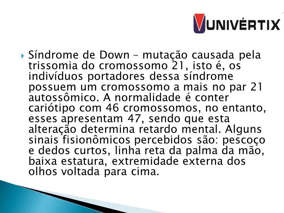 Síndrome de Down – mutação causada pela trissomia do cromossomo 21, isto é, os indivíduos portadores dessa síndrome possuem um cromossomo a mais no pa