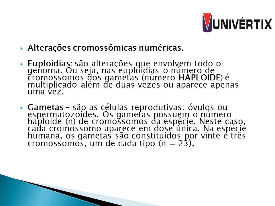Alterações cromossômicas numéricas. Euploidias: são alterações que envolvem todo o genoma. Ou seja, nas euploidias o número de cromossomos dos gametas