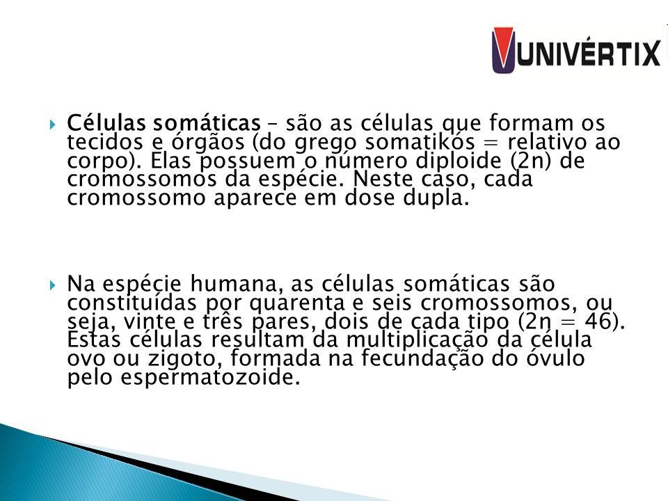 Células somáticas – são as células que formam os tecidos e órgãos (do grego somatikós = relativo ao corpo). Elas possuem o número diploide (2n) de cro