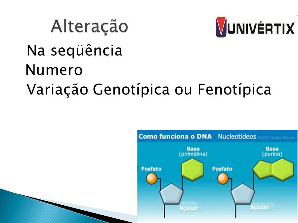 Na seqüência Numero Variação Genotípica ou Fenotípica