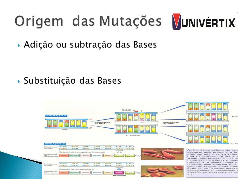 Adição ou subtração das Bases Substituição das Bases