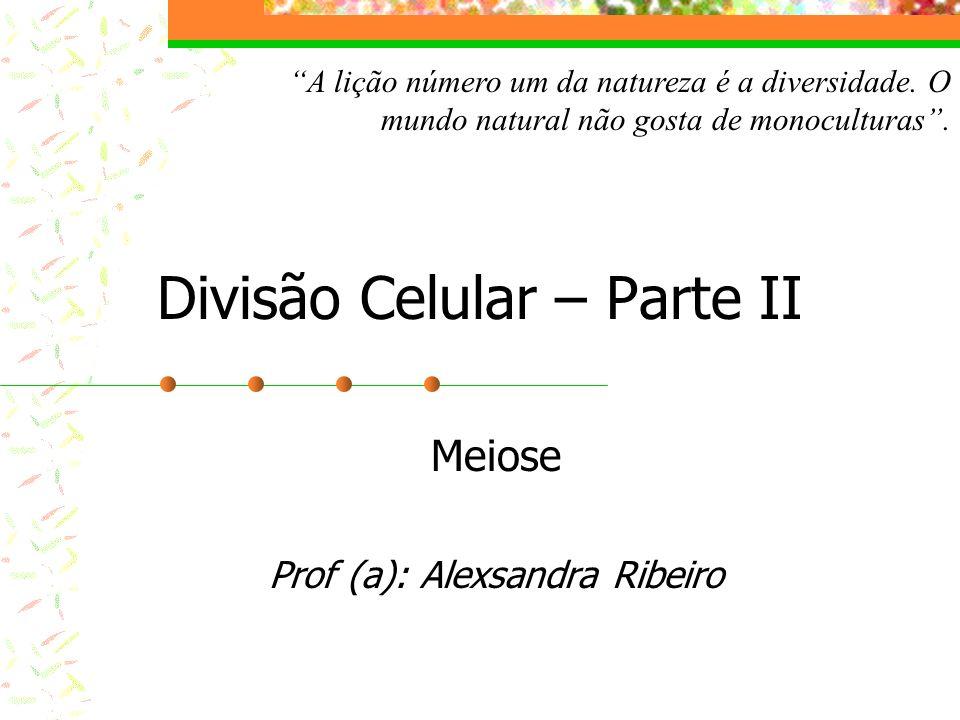 Divisão Celular – Parte II Meiose Prof (a): Alexsandra Ribeiro A lição número um da natureza é a diversidade. O mundo natural não gosta de monocultura
