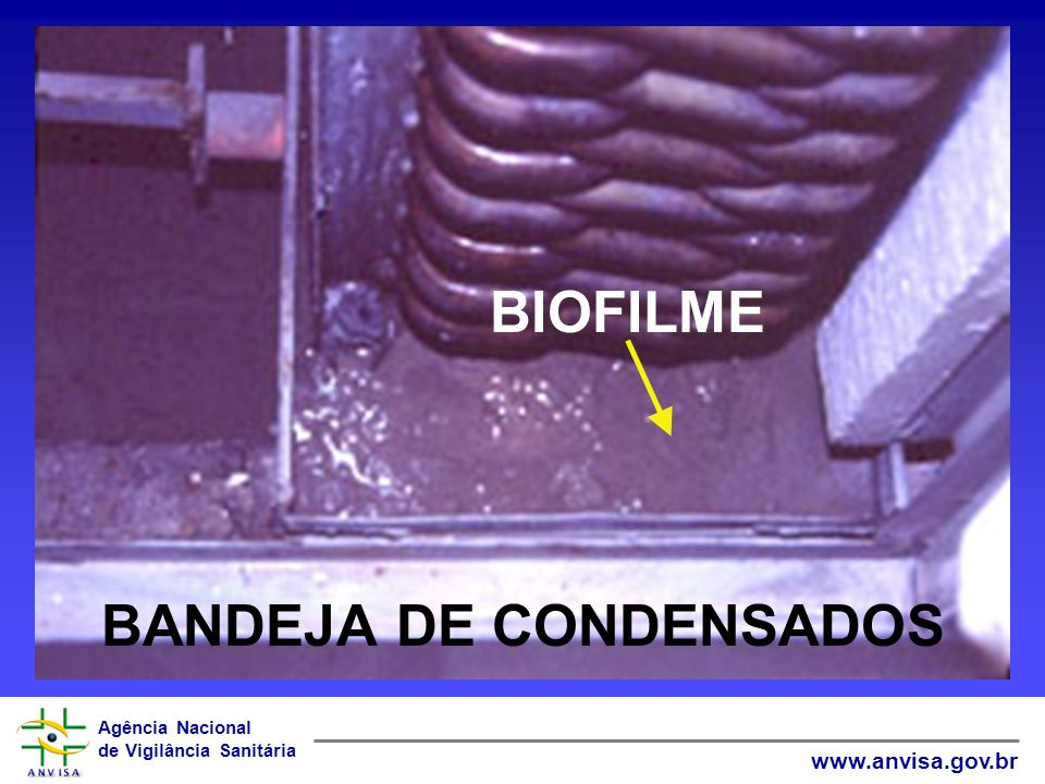 Agência Nacional de Vigilância Sanitária www.anvisa.gov.br BANDEJA DE CONDENSADOS BIOFILME