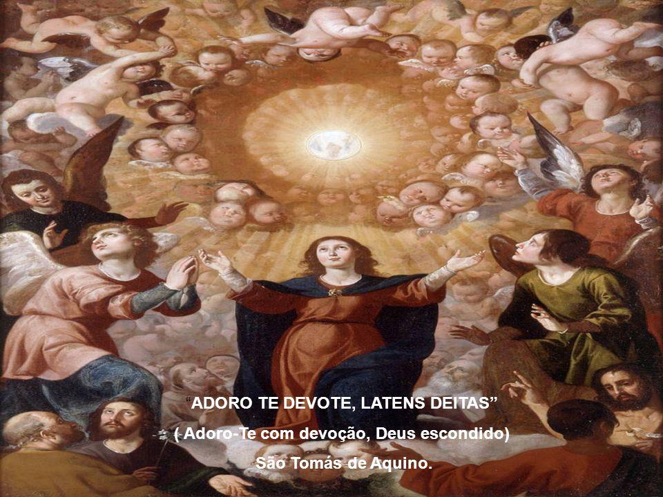 Na Hóstia Consagrada, Jesus se reparte e se derrama para que tenhamos Sua Vida. Jesus Eucarístico é: CARIDADE, AMOR, PERDÃO, RECONCILIAÇÃO, COMUNHÃO,