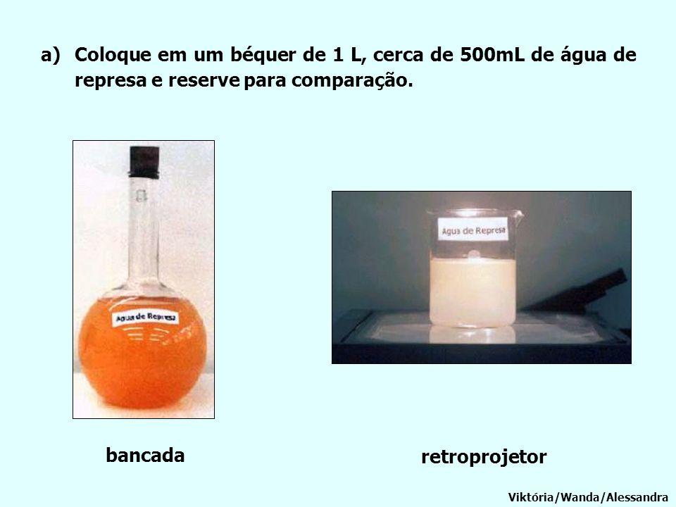 a)Coloque em um béquer de 1 L, cerca de 500mL de água de represa e reserve para comparação. Viktória/Wanda/Alessandra bancada retroprojetor