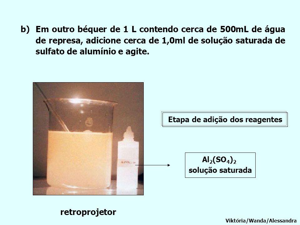 b)Em outro béquer de 1 L contendo cerca de 500mL de água de represa, adicione cerca de 1,0ml de solução saturada de sulfato de alumínio e agite. Viktó