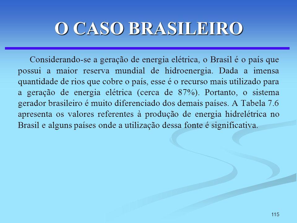115 O CASO BRASILEIRO Considerando-se a geração de energia elétrica, o Brasil é o país que possui a maior reserva mundial de hidroenergia. Dada a imen
