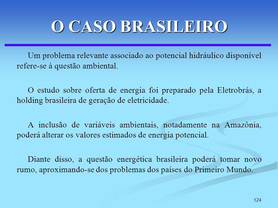 124 O CASO BRASILEIRO Um problema relevante associado ao potencial hidráulico disponível refere-se à questão ambiental. O estudo sobre oferta de energ