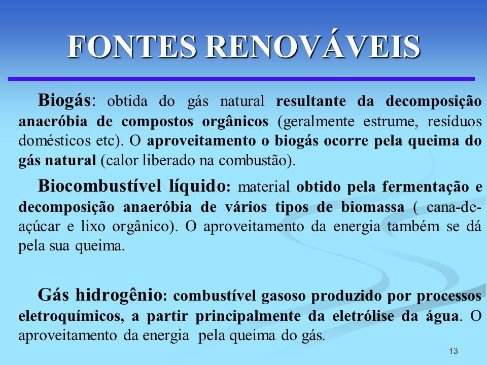 13 FONTES RENOVÁVEIS Biogás: obtida do gás natural resultante da decomposição anaeróbia de compostos orgânicos (geralmente estrume, resíduos doméstico