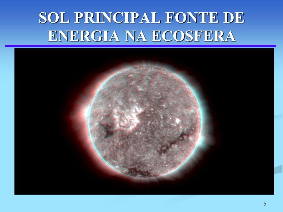 5 SOL PRINCIPAL FONTE DE ENERGIA NA ECOSFERA