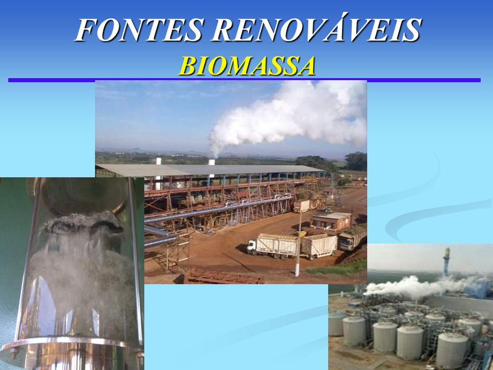 95 FONTES RENOVÁVEIS BIOMASSA