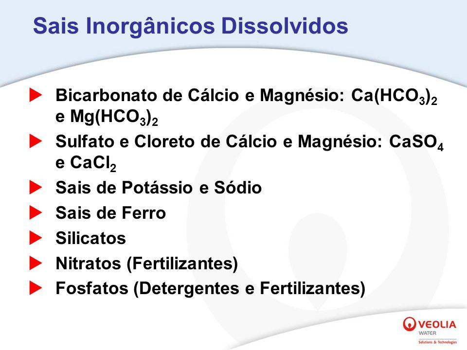 Sais Inorgânicos Dissolvidos Bicarbonato de Cálcio e Magnésio: Ca(HCO 3 ) 2 e Mg(HCO 3 ) 2 Sulfato e Cloreto de Cálcio e Magnésio: CaSO 4 e CaCl 2 Sais de Potássio e Sódio Sais de Ferro Silicatos Nitratos (Fertilizantes) Fosfatos (Detergentes e Fertilizantes)