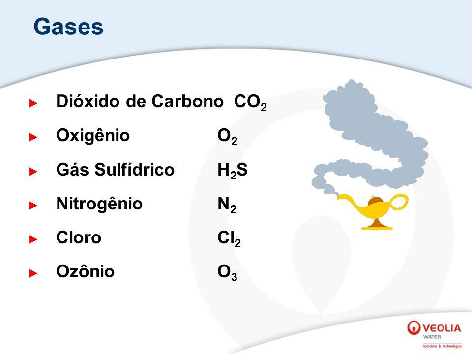 Gases Dióxido de Carbono CO 2 OxigênioO 2 Gás Sulfídrico H 2 S NitrogênioN 2 Cloro Cl 2 Ozônio O 3