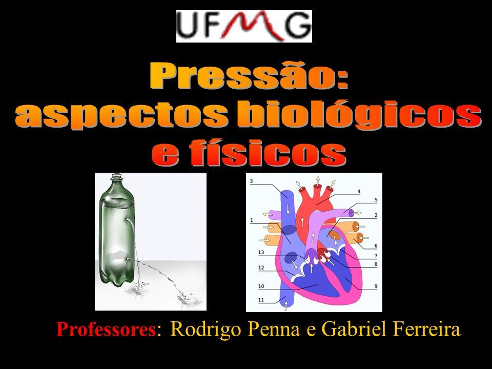 Professores : Rodrigo Penna e Gabriel Ferreira