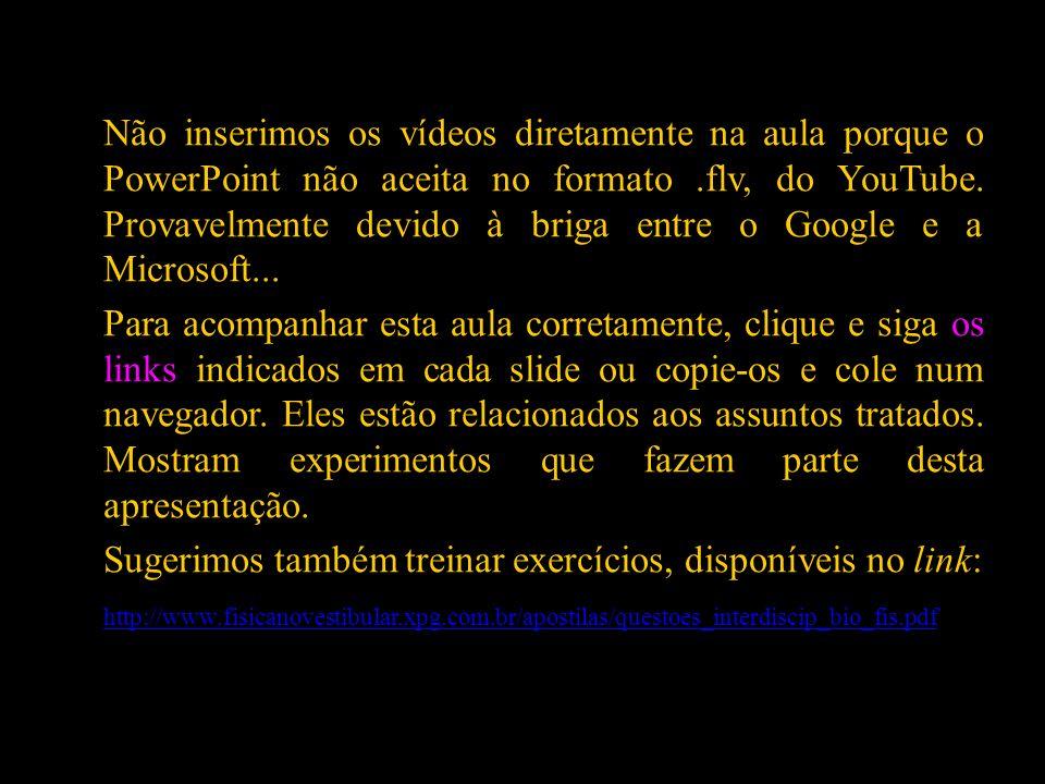 Não inserimos os vídeos diretamente na aula porque o PowerPoint não aceita no formato.flv, do YouTube. Provavelmente devido à briga entre o Google e a