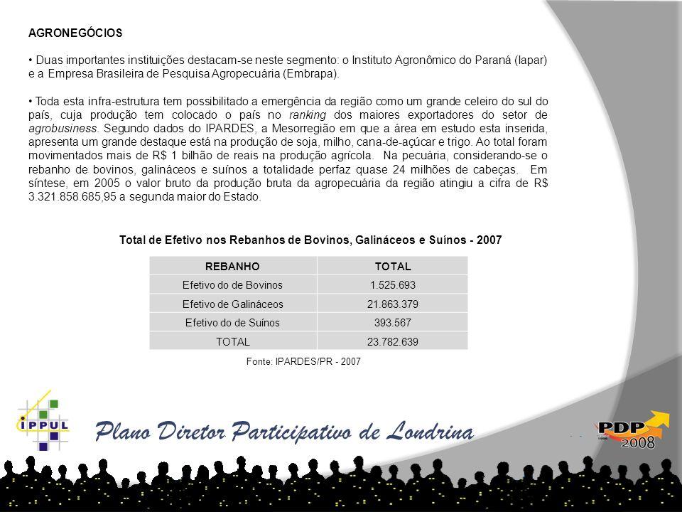 Plano Diretor Participativo de Londrina AGRONEGÓCIOS Duas importantes instituições destacam-se neste segmento: o Instituto Agronômico do Paraná (Iapar