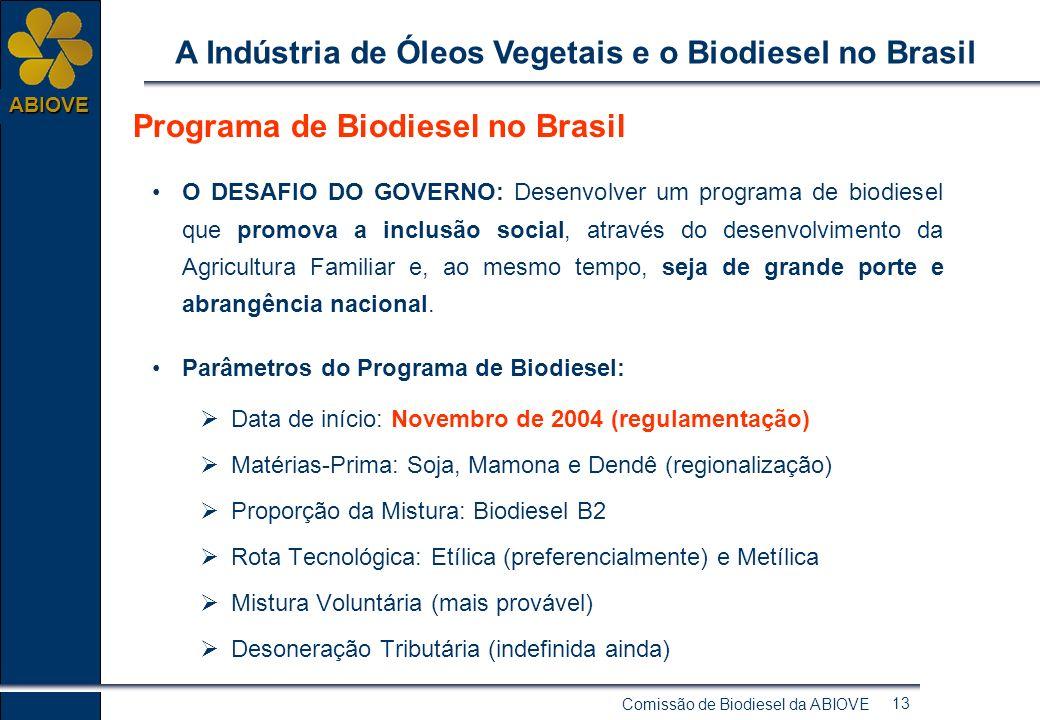 Comissão de Biodiesel da ABIOVE 12 ABIOVE A Indústria de Óleos Vegetais e o Biodiesel no Brasil Biodiesel no Brasil - Questões Fundamentais: Objetivos