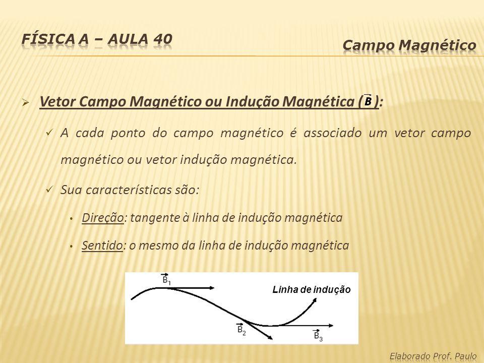 Vetor Campo Magnético ou Indução Magnética ( ): A cada ponto do campo magnético é associado um vetor campo magnético ou vetor indução magnética. Sua c
