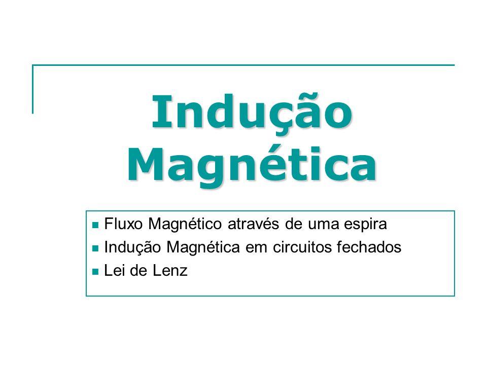 Indução Magnética Fluxo Magnético através de uma espira Indução Magnética em circuitos fechados Lei de Lenz