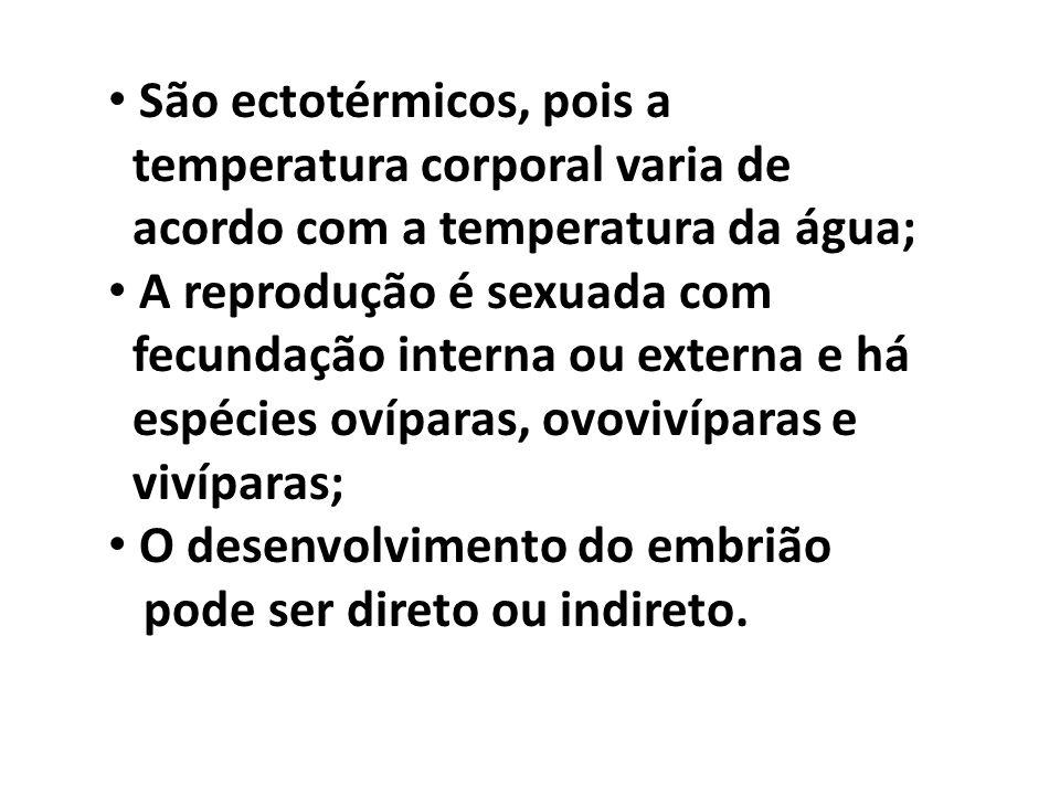 São ectotérmicos, pois a temperatura corporal varia de acordo com a temperatura da água; A reprodução é sexuada com fecundação interna ou externa e há