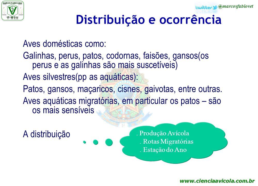www.cienciaavicola.com.br @marcosfabiovet Distribuição e ocorrência Aves domésticas como: Galinhas, perus, patos, codornas, faisões, gansos(os perus e