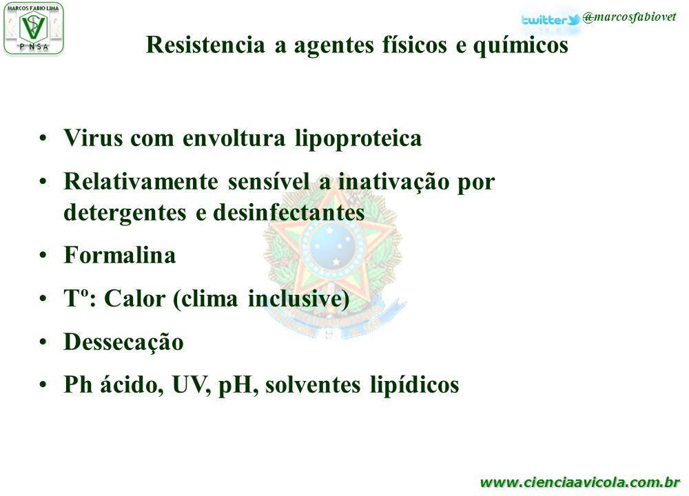 www.cienciaavicola.com.br @marcosfabiovet Resistencia a agentes físicos e químicos Virus com envoltura lipoproteica Relativamente sensível a inativaçã