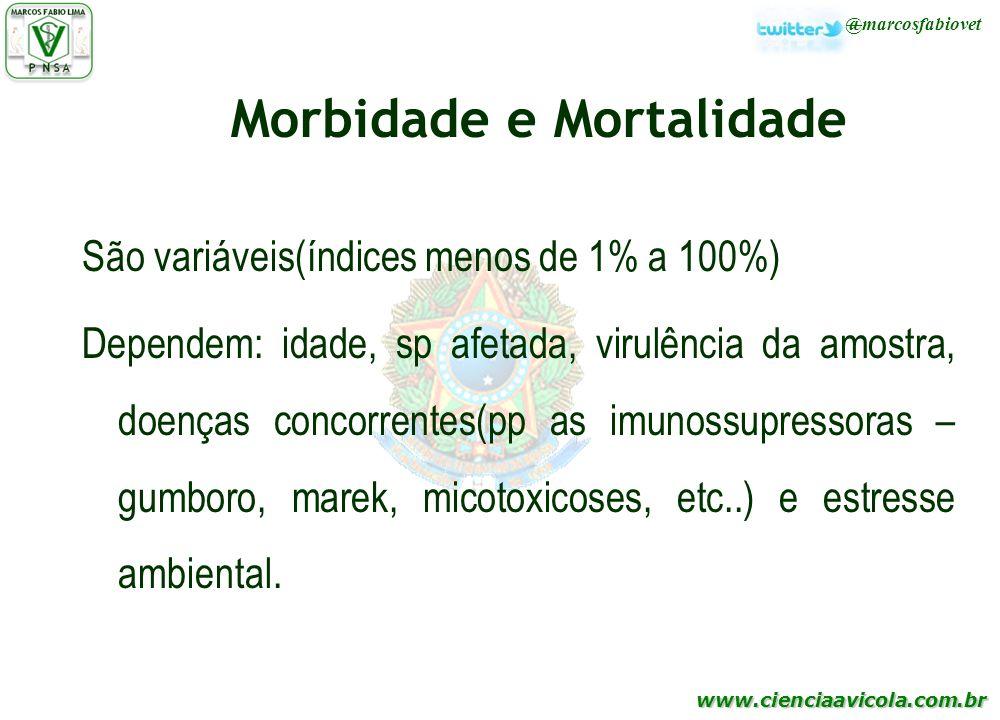 www.cienciaavicola.com.br @marcosfabiovet Morbidade e Mortalidade São variáveis(índices menos de 1% a 100%) Dependem: idade, sp afetada, virulência da