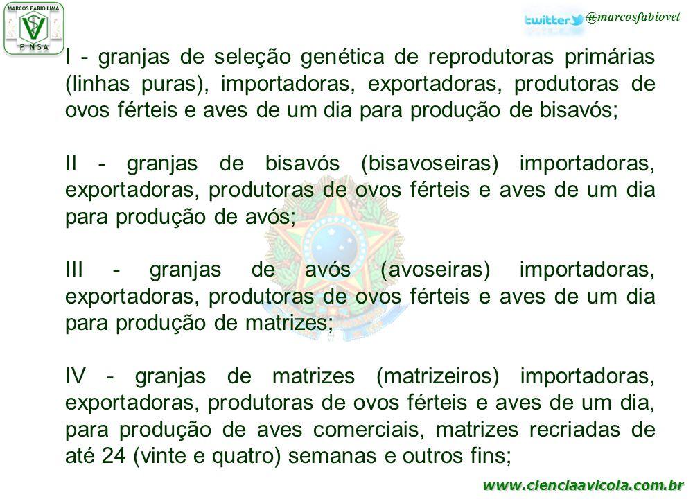 www.cienciaavicola.com.br @marcosfabiovet I - granjas de seleção genética de reprodutoras primárias (linhas puras), importadoras, exportadoras, produt