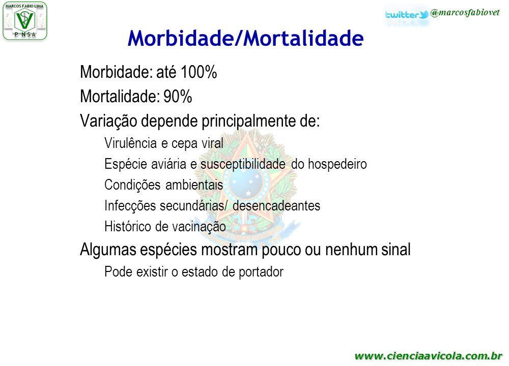 www.cienciaavicola.com.br Morbidade/Mortalidade Morbidade: até 100% Mortalidade: 90% Variação depende principalmente de: Virulência e cepa viral Espéc