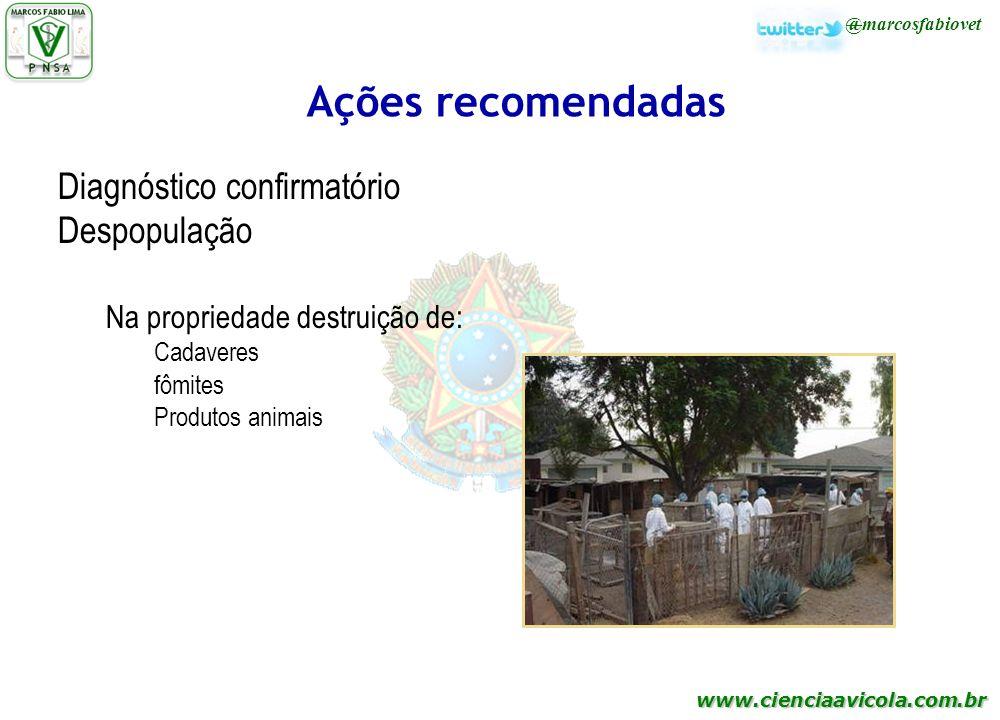 www.cienciaavicola.com.br @marcosfabiovet Ações recomendadas Diagnóstico confirmatório Despopulação Na propriedade destruição de: Cadaveres fômites Pr