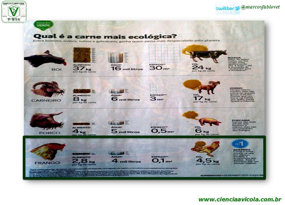 www.cienciaavicola.com.br @marcosfabiovet