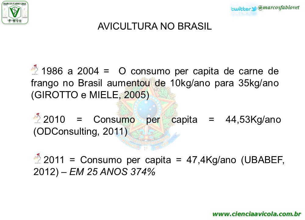 www.cienciaavicola.com.br 1986 a 2004 = O consumo per capita de carne de frango no Brasil aumentou de 10kg/ano para 35kg/ano (GIROTTO e MIELE, 2005) 2