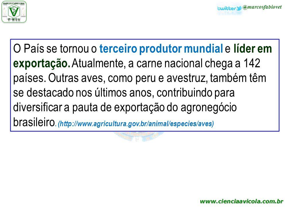 www.cienciaavicola.com.br @marcosfabiovet O País se tornou o terceiro produtor mundial e líder em exportação. Atualmente, a carne nacional chega a 142