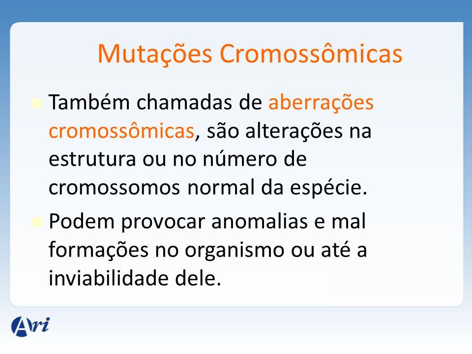 Mutações Cromossômicas Também chamadas de aberrações cromossômicas, são alterações na estrutura ou no número de cromossomos normal da espécie. Podem p