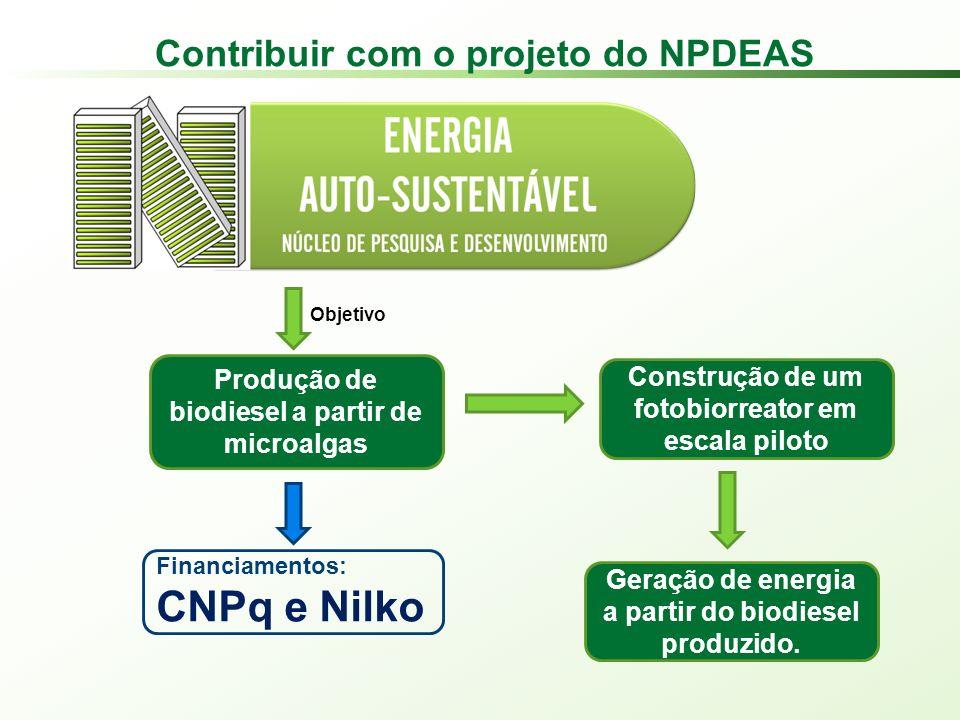 Contribuir com o projeto do NPDEAS Construção de um fotobiorreator em escala piloto Geração de energia a partir do biodiesel produzido.