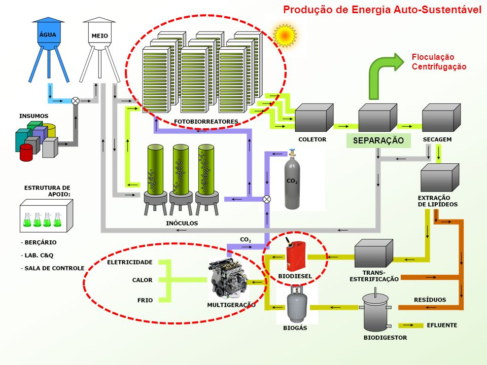 SEPARAÇÃO Floculação Centrifugação Produção de Energia Auto-Sustentável