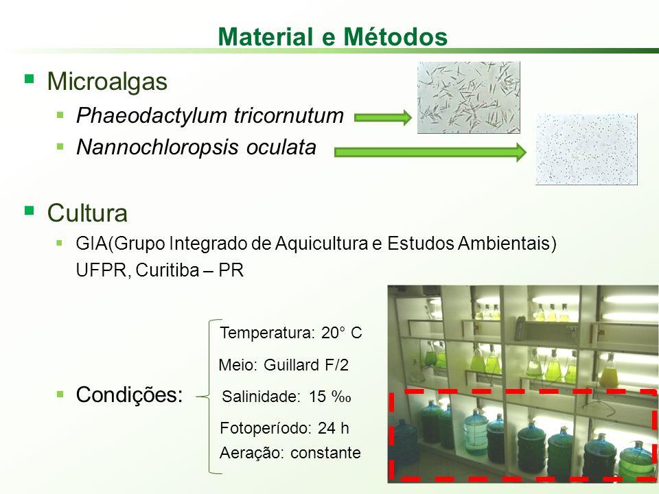 Material e Métodos Microalgas Phaeodactylum tricornutum Nannochloropsis oculata Cultura GIA(Grupo Integrado de Aquicultura e Estudos Ambientais) UFPR, Curitiba – PR Temperatura: 20° C Meio: Guillard F/2 Condições: Salinidade: 15 % 0 Fotoperíodo: 24 h Aeração: constante