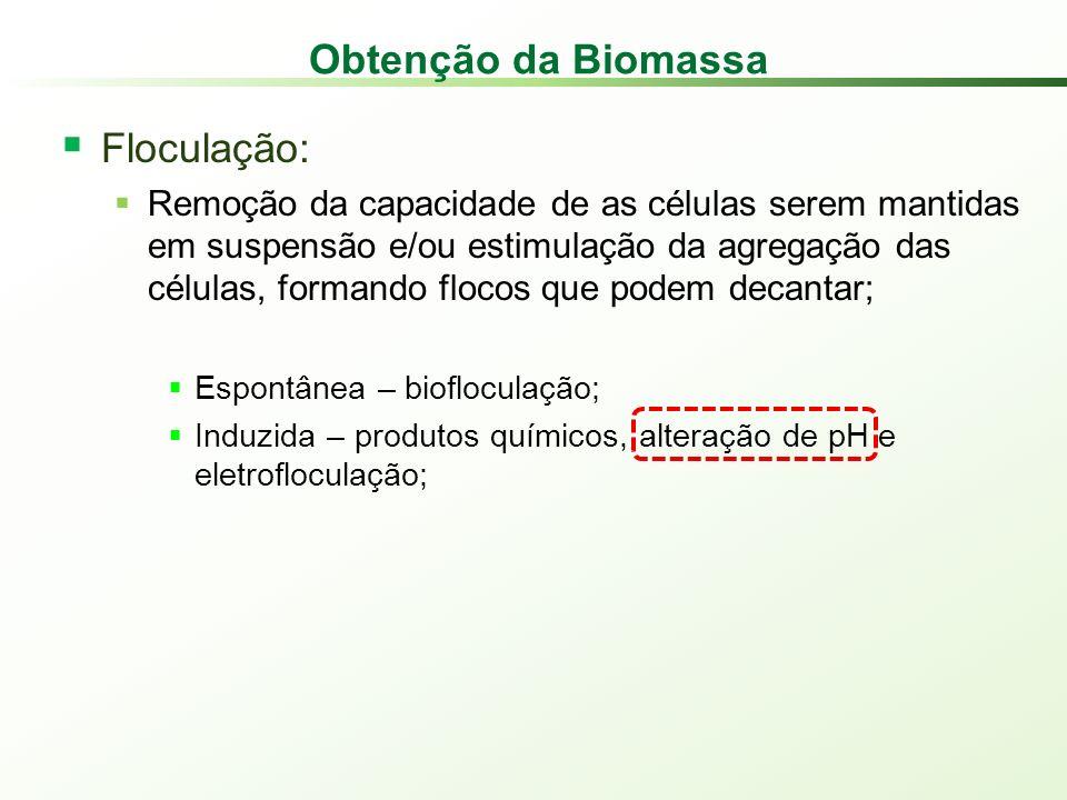 Obtenção da Biomassa Floculação: Remoção da capacidade de as células serem mantidas em suspensão e/ou estimulação da agregação das células, formando flocos que podem decantar; Espontânea – biofloculação; Induzida – produtos químicos, alteração de pH e eletrofloculação;