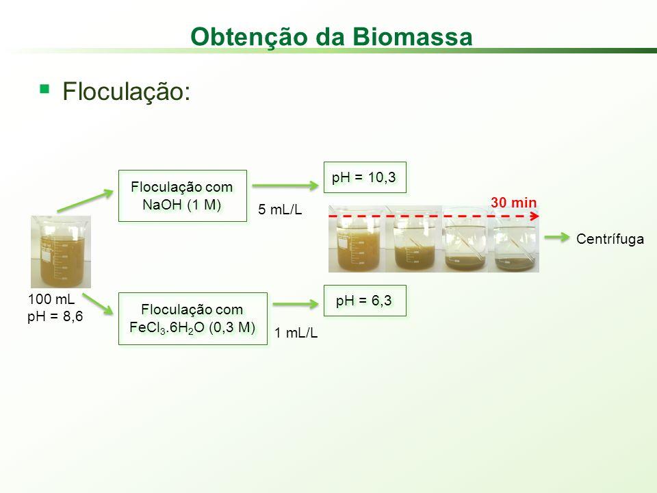 Obtenção da Biomassa Floculação: Floculação com NaOH (1 M) Floculação com FeCl 3.6H 2 O (0,3 M) 100 mL pH = 8,6 5 mL/L 1 mL/L pH = 10,3 pH = 6,3 Centrífuga 30 min